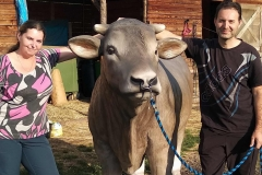 alois býk 10