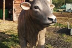 alois býk 11